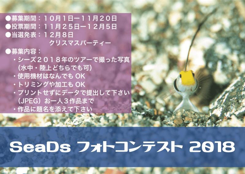 SeaDs fotocontest