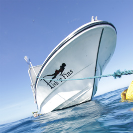 ボート・ダイバー・スペシャルティ・コース